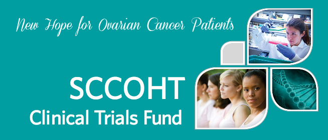 Small Cell Carcinoma of the Ovary, Hypercalcemic Type - Clinical Trials Fund